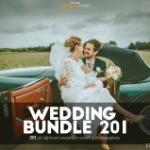 婚礼婚纱摄影Lightroom预设 Wedding 201 Lightroom Presets