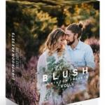 甜蜜婚礼婚纱人像胶片Lightroom预设第二季 Baumann Blush Vol2