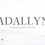 明快现代感较细英文衬线字体系列包 Adallyn Serif Font Family Pack