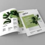 企业业务介绍杂志排版设计模板 Agrica – Magazine Template