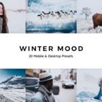 冬季旅拍情绪胶片Lightroom预设/APP滤镜/旅行Vlog视频调色LUT预设