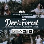 黑暗森林情绪胶片人像Lightroom预设/移动APP滤镜/旅行Vlog视频调色LUT预设