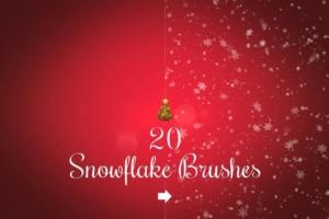 20个雪花效果的笔刷 20 Snowflake brushes